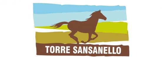 Torre Sansanello