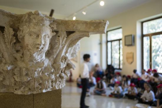 MAPRI- Museo Archeologico F.Ribezzo
