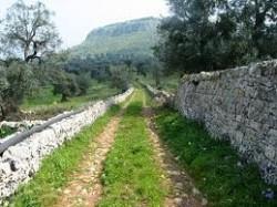 Parco Archeologico di Santa Maria d'Agnano