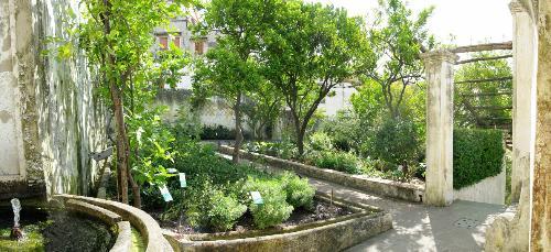 Giardino della minerva salerno il tacco di bacco - Giardini di bacco caltagirone ...