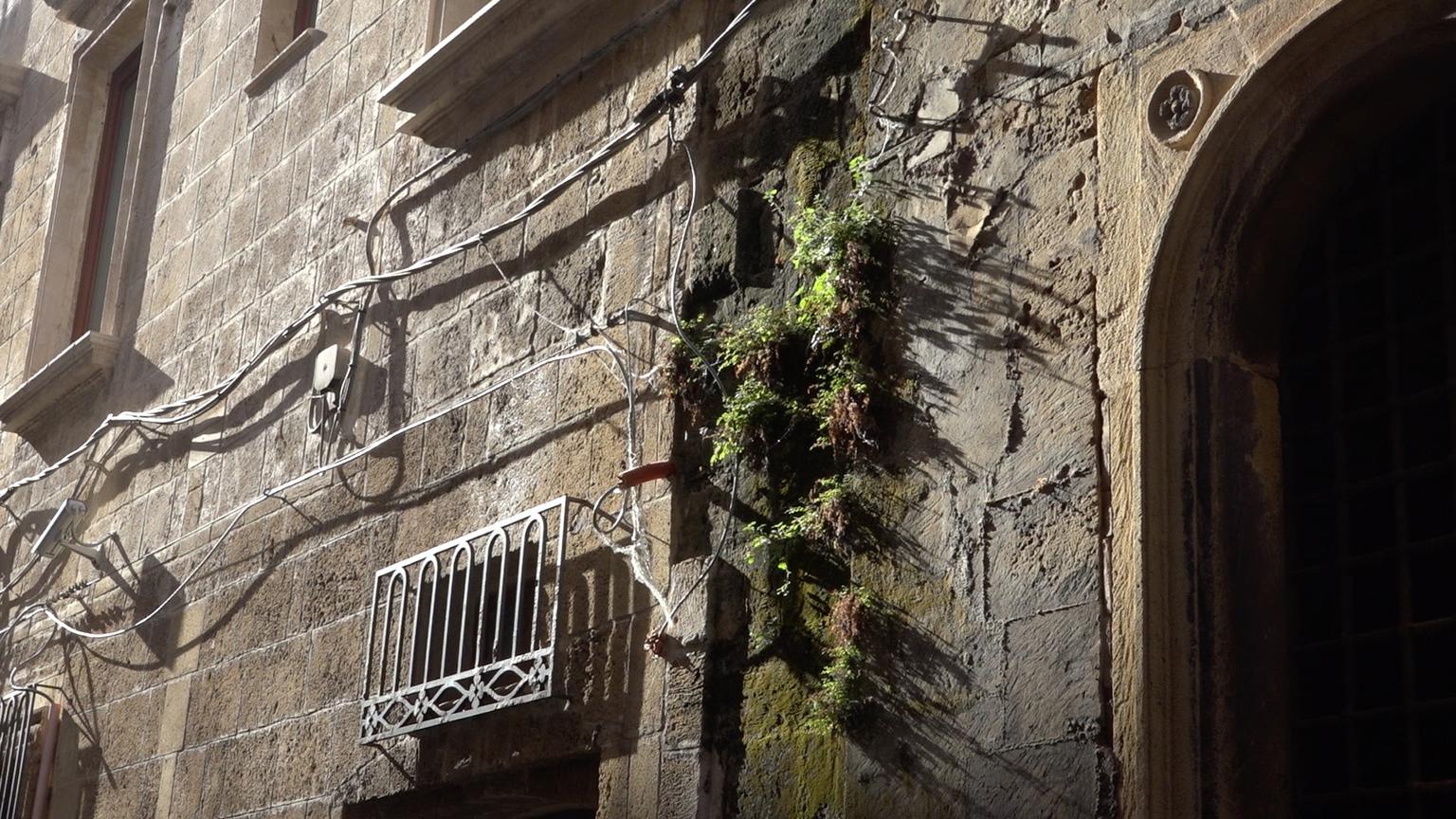 Light in Taranto raccolta fondi