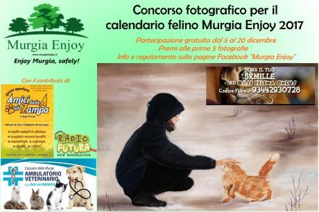 Concorso fotografico per il calendario felino Murgia Enjoy 2017