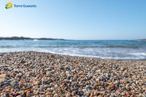 In Puglia una spiaggia fatta di conchiglie