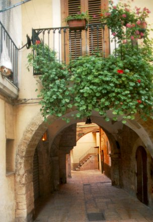 Di Arco In Arco Le Corti Storiche Di Bari Vecchia Bari