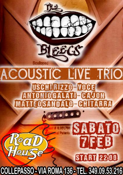 The Bleegs Acoustic Trio - 7/2/15 al Roadhouse Collepasso