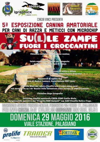 """5^Esposizione Canina Amatoriale """"su(l)le Zampe,  fuori I croccantini"""""""