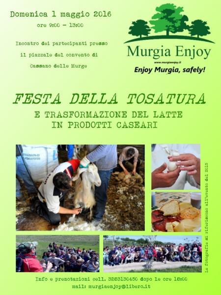 Festa della tosatura e trasformazione del latte in prodotti caseari