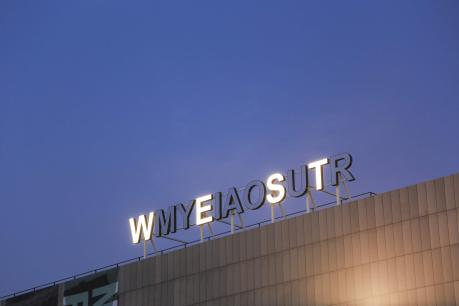 CAPO D'ARTE presenta Shilpa Gupta - My East is Your West