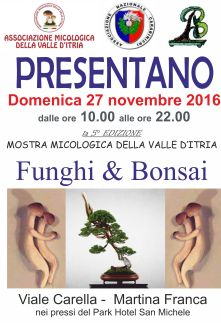 5° Mostra Funghi & Bonsai Città di Martina Franca