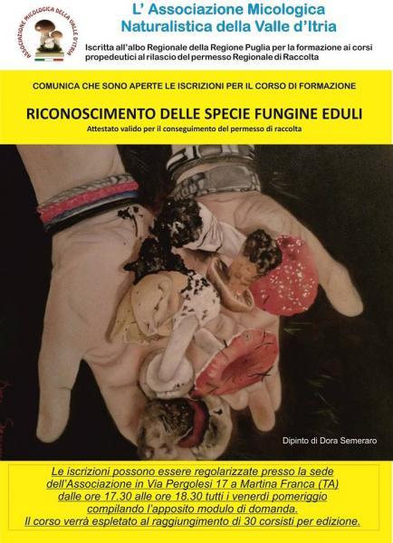 """Corso di """"formazione per la Raccolta Dei Funghi Epigei Spontanei"""""""