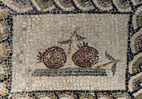 """Programmazione culturale del mese di maggio al MArTA: """"Uso di fiori, piante e frutta nell'Antichità""""."""