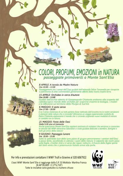 Colori, Profumi, Emozioni in Natura. Passeggiate Primaverili a Monte Sant'Elia