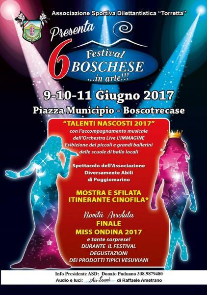 Dal 9 all'11 giugno FESTIVAL BOSCHESE… IN ARTE!