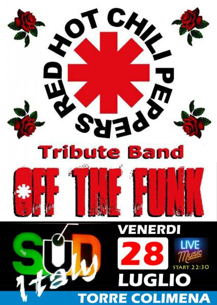 Red Hot Chili Peppers Tribute Band live