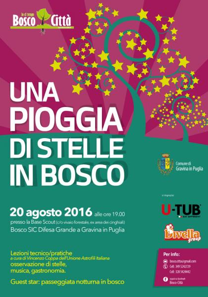 """""""Una pioggia di stelle in Bosco"""" - 5° Edizione"""