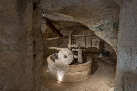 MOOM - Museo dell'Olio di Oliva di Matera