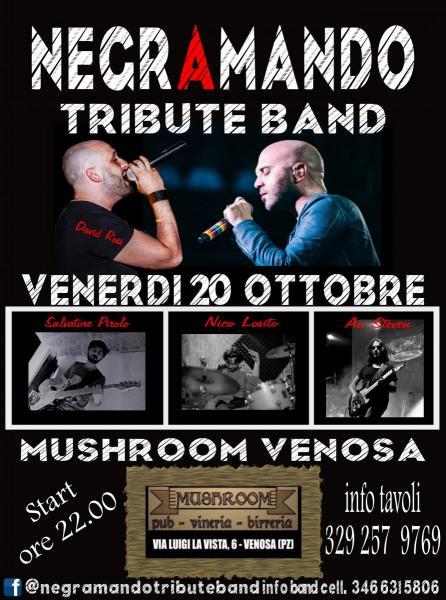 Negramando Live - Mushroom - Venosa