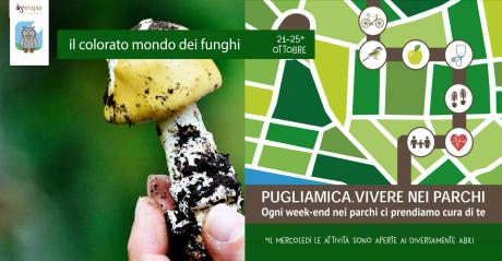 Vivere nei Parchi - Sport nel bosco e il colorato mondo dei funghi