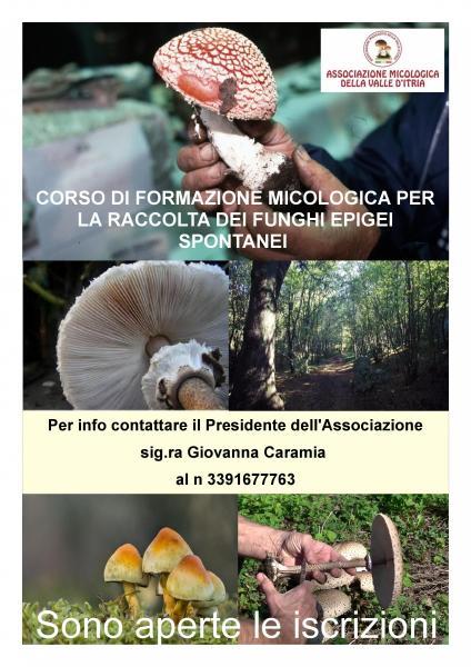 Corso di Formazione per il Riconoscimento Dei Funghi Epigei Spontanei