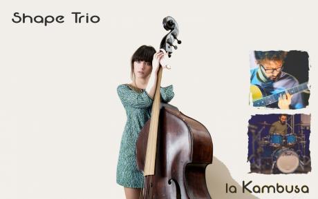 Shape Trio in Kambusa