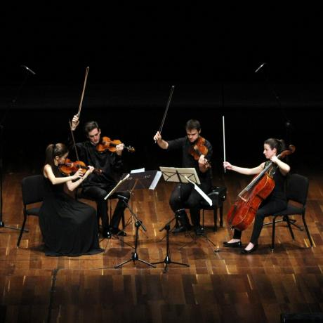 Mozart in concerto e in quartetto