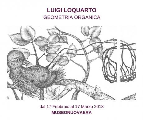 Luigi Loquarto | Geometria Organica