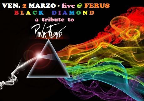 "PINK FLOYD special tribute live con i "" BLACK DIAMOND """