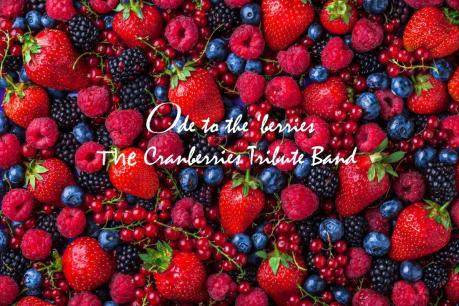 Ode to the 'berries - The Cranberries Tribute in concerto al Nordwind discopub