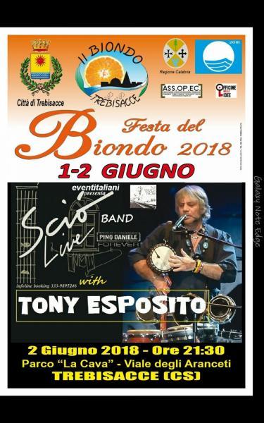 Sciò Live Band Pino Daniele Forever & Tony Esposito in concerto