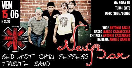 Joy18 (Red Hot Chili Peppers Tribute Band) Live al New Bar Tursi (Mt)