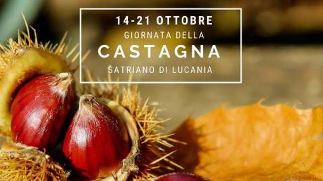 Giornata della Castagna in Basilicata
