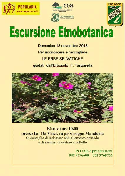 ESCURSIONE ETNOBOTANICA guidata a Manduria (Ta), domenica 18 novembre 2018.