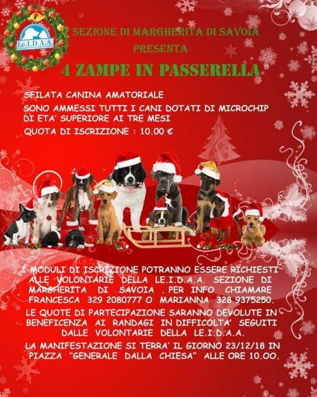4 Zampe in Passerella