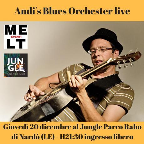 Andi's blues orchester live al Jungle Parco Raho - Nardò (LE)