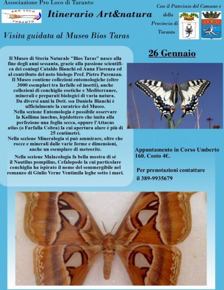 Visita guidata al Museo Bios Taras