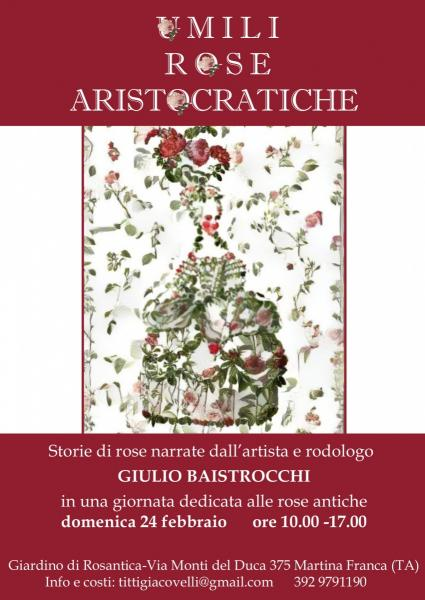 Umili Rose Aristocratiche
