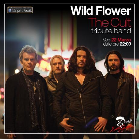 Wild Flower - The Cult Tribute band - Santo Graal Trani