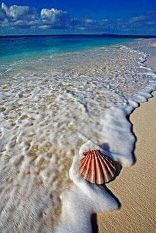 """""""GRANELLO DI SABBIA NELL'OCEANO. PAROLE DI SILVIA E PER SILVIA"""""""