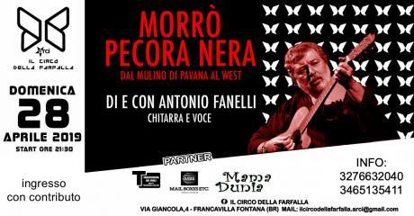 Morrò Pecora Nera (di Antonio Fanelli)