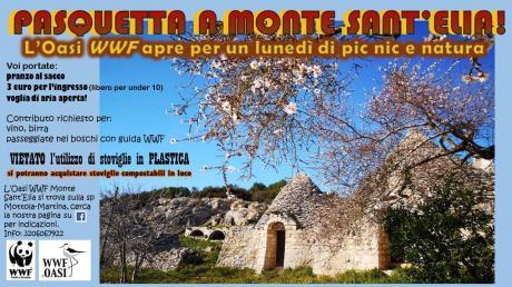 Pasquetta a Monte Sant'Elia