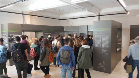 25 aprile al Museo e Parco Archeologico di Egnazia Ingresso gratuito