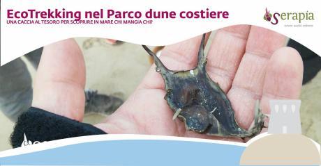EcoTrekking al Parco Dune Costiere