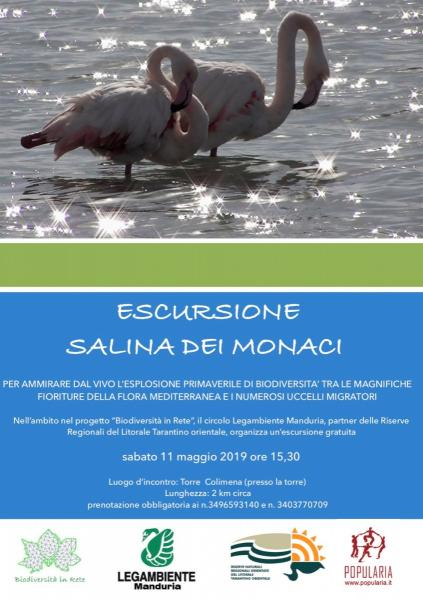 """Escursione con guida gratuita alla """"Salina dei Monaci"""" per apprezzare l'esplosione primaverile di biodiversità, sabato 11 maggio, litoranea di Manduria."""