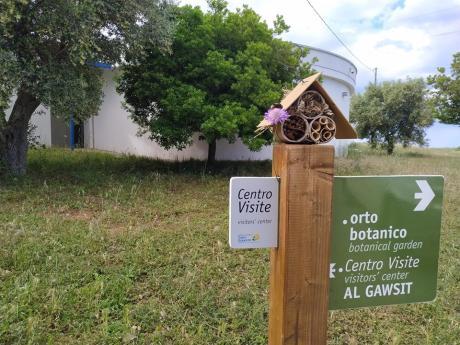 Bee&Bee Le case degli insetti - Laboratorio a Torre Guaceto