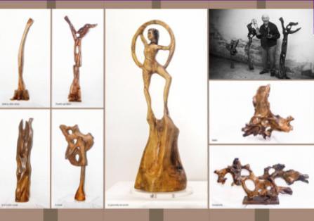 Chiedilo agli alberi, espozione permanente per Matera 2019