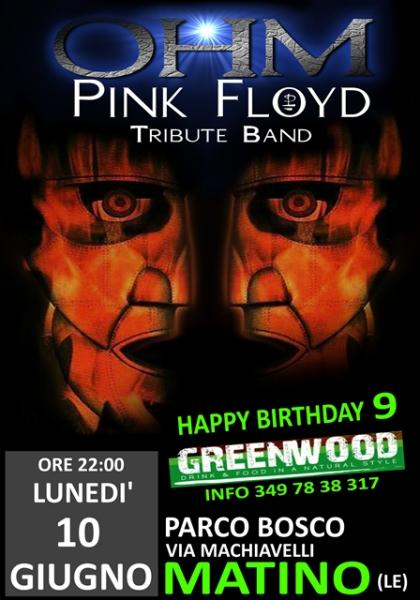 OHM PINK FLOYD LIVE - MATINO (LE) - GREEN WOOD