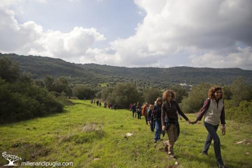 Escursione tra boschi e santuari