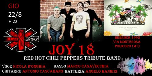 Joy 18 Red Hot Chili Peppers tribute band live @Beerock 1995