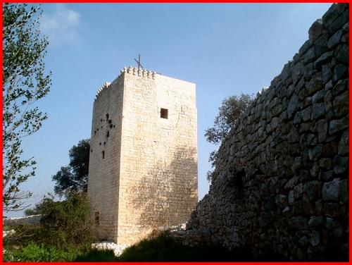 Alla scoperta di Torre Castiglione