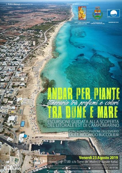 Andar per piante tra dune e mare